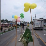 A planted median with balloon trees