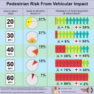 Pedestrians at Risk in our Cities