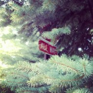 Friday Fun – Hidden Stop Sign